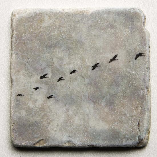 Foto tegel, Birds 2