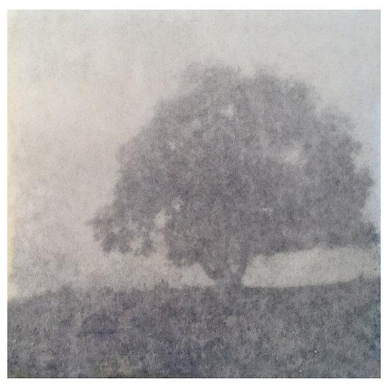 Kunstkaart Bomen, nr. 5
