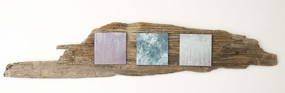 Foto serie op drijfhout, Pastel