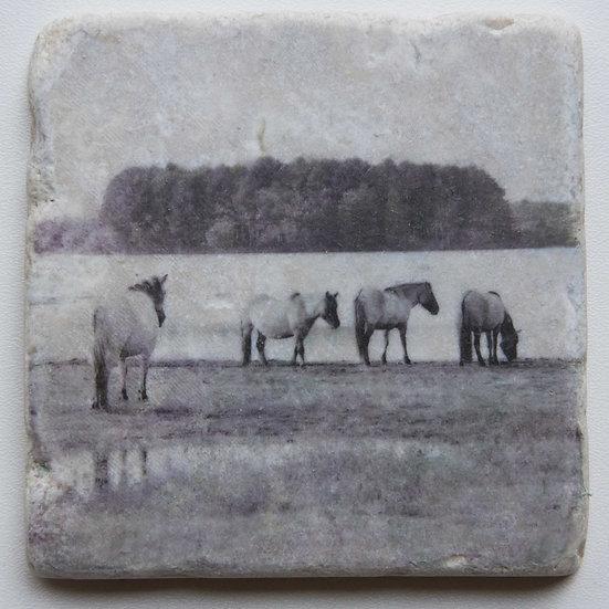 Foto tegel, Wild Horses 2