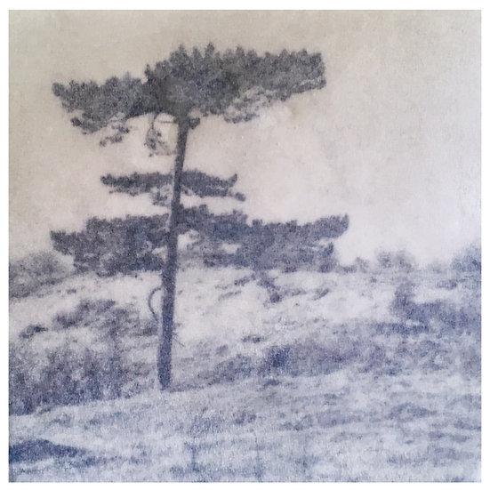 Kunstkaart Bomen, nr. 2