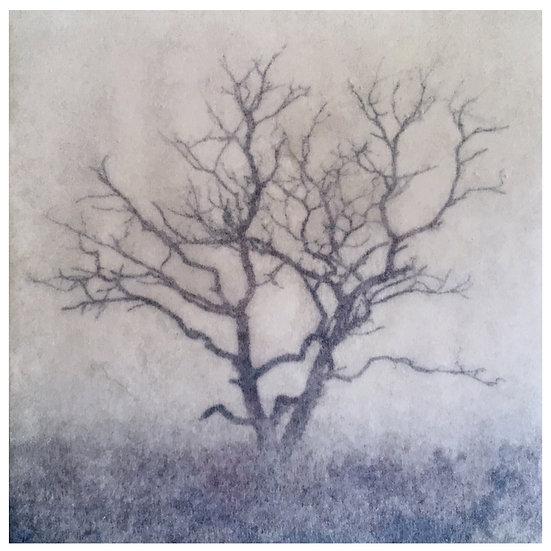 Kunstkaart Bomen, nr. 1