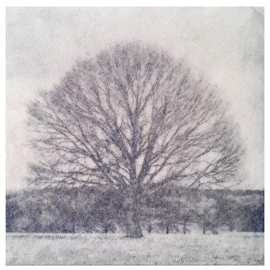 Kunstkaart Bomen, nr. 3