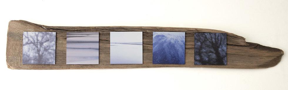Foto serie op drijfhout, Feeling blue