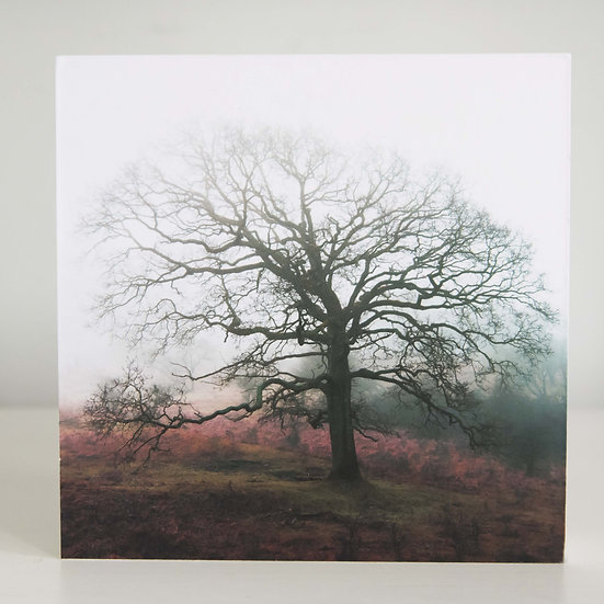 Houten fotoblok Mist