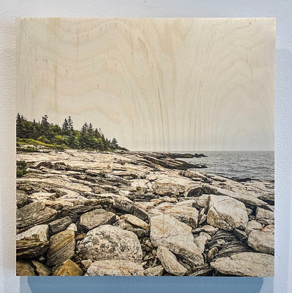 Nicholas Howley -  Ocean Point