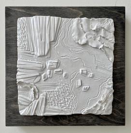 Topography in White - Brendan Roddy.JPG