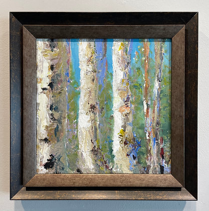 Aimee C. Timmins -  Birches