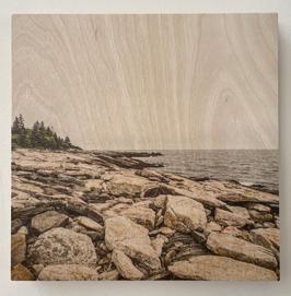 Ocean Point - Nicholas Howley.JPG