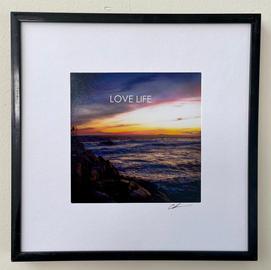 Love Life - Christine Anuszewski.JPG