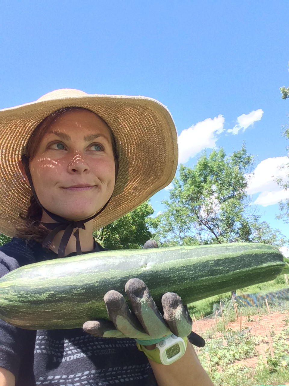 Guess who is forced to love zucchini squash?