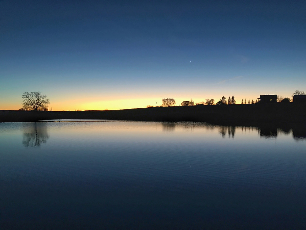 The pond at sunset.