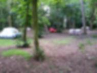 School woodland
