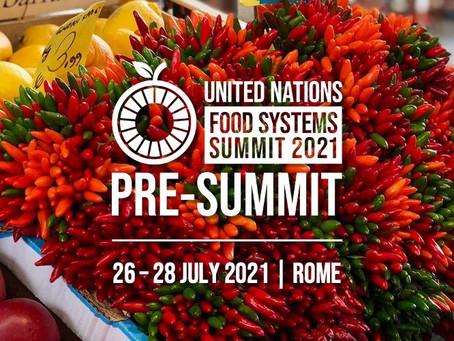 La Red Mujer y Hábitat participa en la Pre-Cumbre y Cumbre de los Sistemas Alimentarios