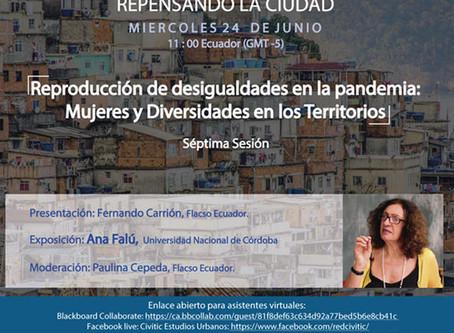 Reproducción de desigualdades en la pandemia: Mujeres y Diversidades por Ana Falú