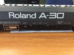 Roland A30 #2