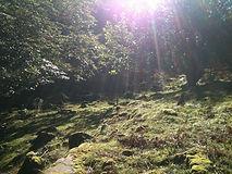 Profitez des ventas dans la montagne, randonnées et ventas côte basque