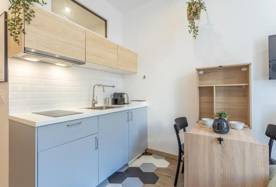 cuisine grise amenagement tendance renovation appartement travaux-decoration lyon architecte intérieur studiolb lisa bronsztejn cocon printanier