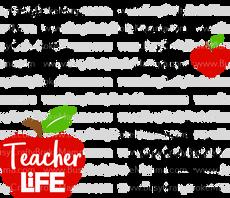 4 - Teacher Life.png