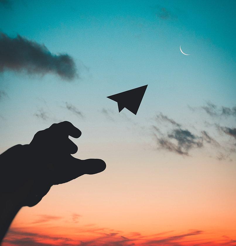 silhouette-photo-of-man-throw-paper-plan
