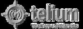 telium_logo.png