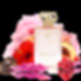 elixir-pour-femme-essence-de-parfum-100m