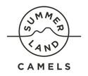 summer-land-camels-square.jpg
