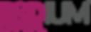 RADIUM-Logo-RGB.png