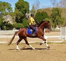 Dera and Bryce Training.jpg