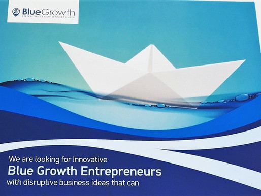 Supporting entrepreneurship in the blue economy through engaging multiple stakeholders