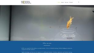 Reiddl Technology Consultants
