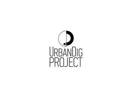 Urban Dig Project