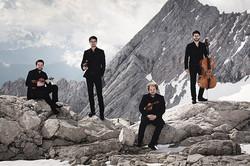 Goldmund Quartet 4_Nikolai Lund