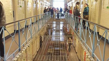 Theatre Beyond Performance: 'Inside' at Reading Prison