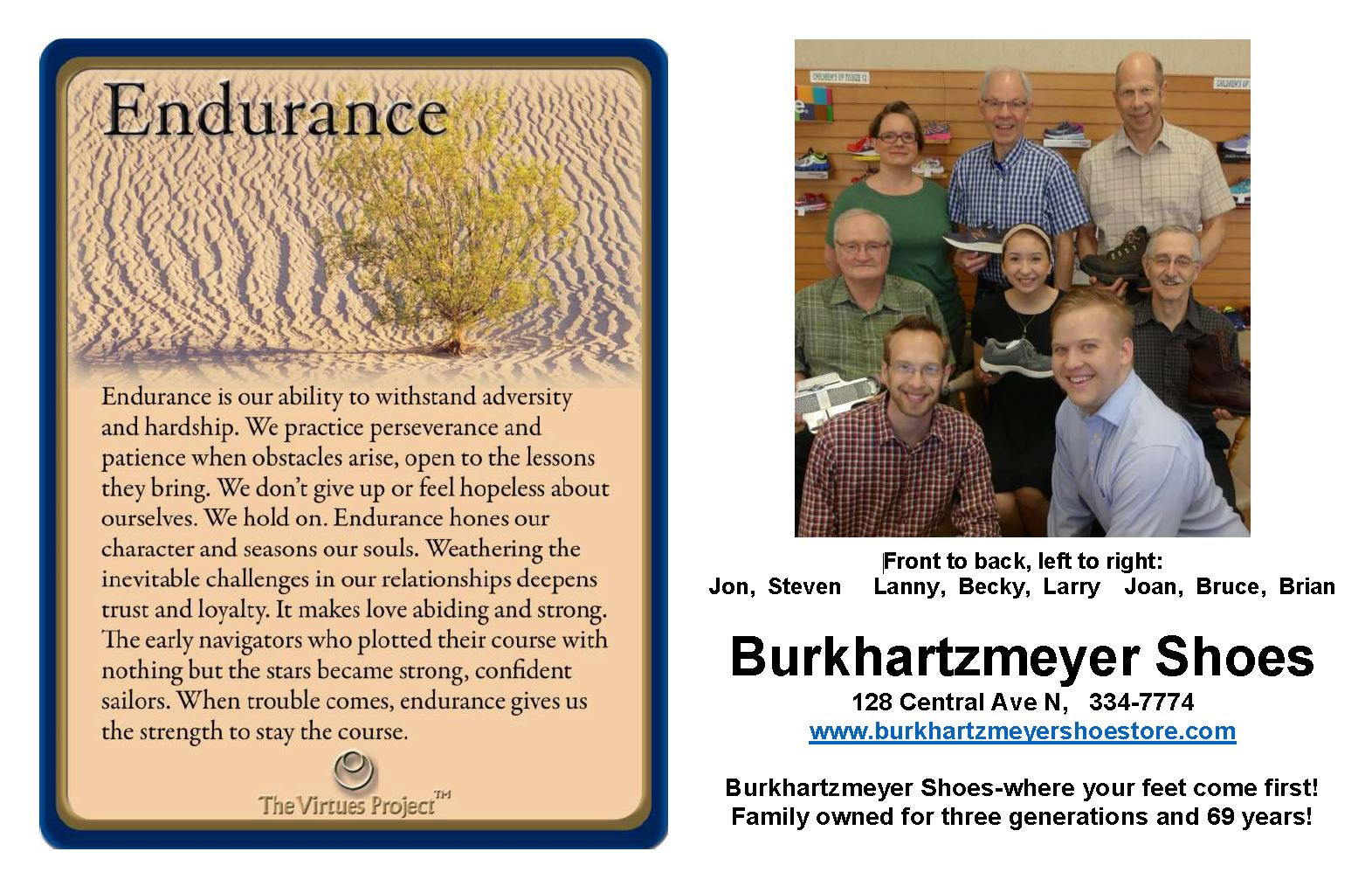 Burkhartzmeyer Shoes Endurance.JPG