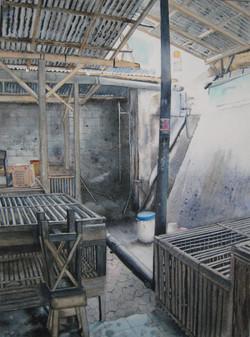 Cages à poules sur le marché à Bali