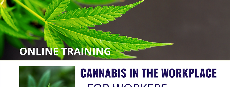 Cannabis InThe Workplace: For Workers