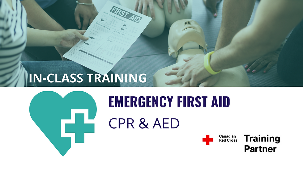 Standard First Aid & CPR level 'C'