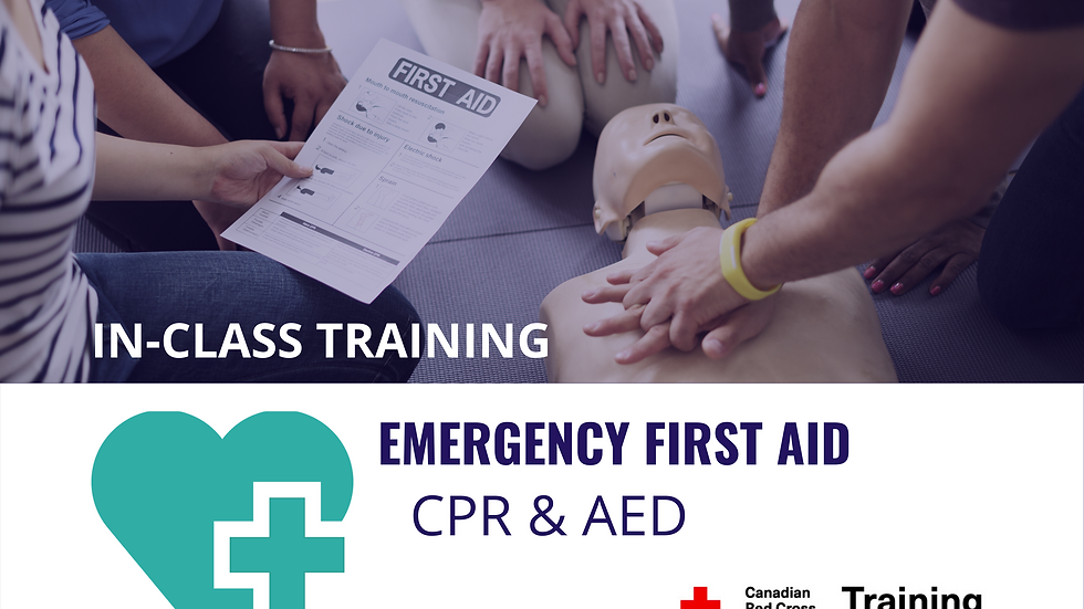 Emergency First Aid & Level 'C' CPR Certification