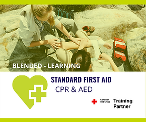 Standard First Aid-2.png