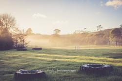 Muriwai Countryside