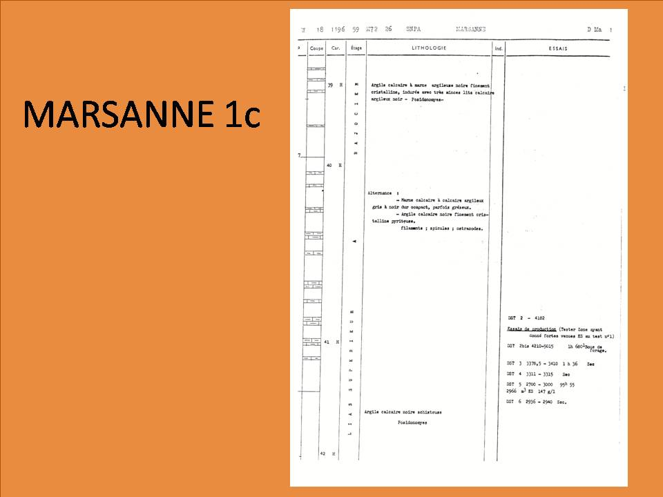Diapositive215