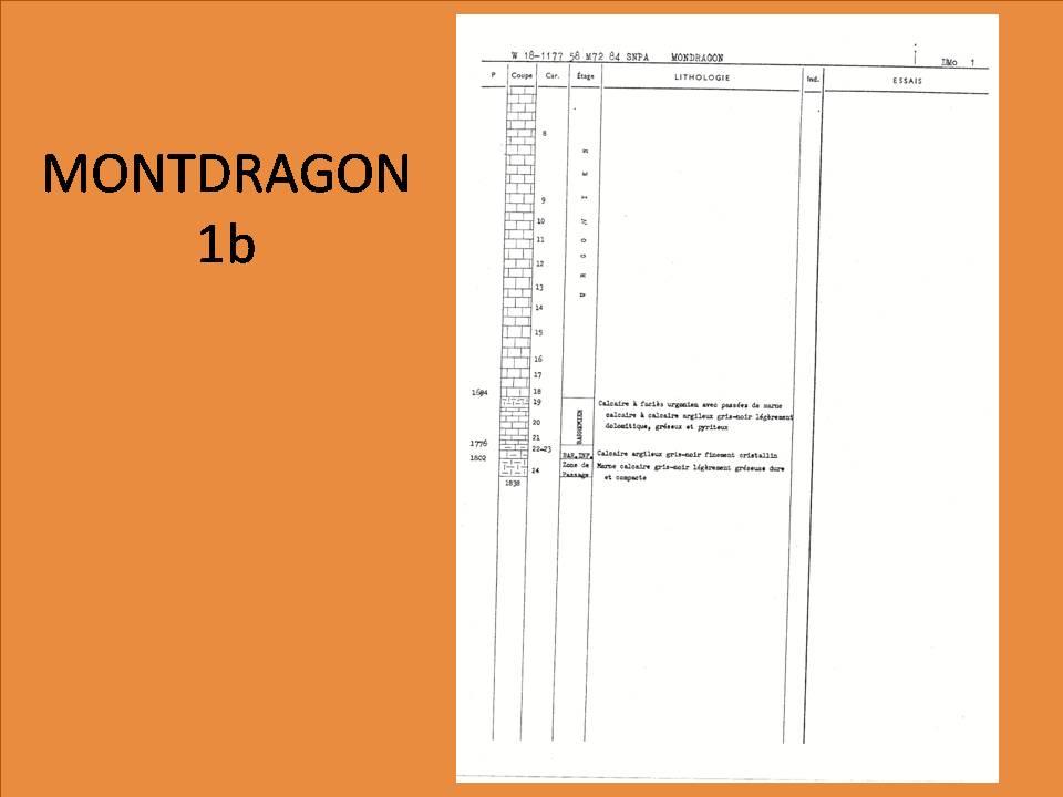 Diapositive245