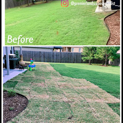 French Drain and Sod Install
