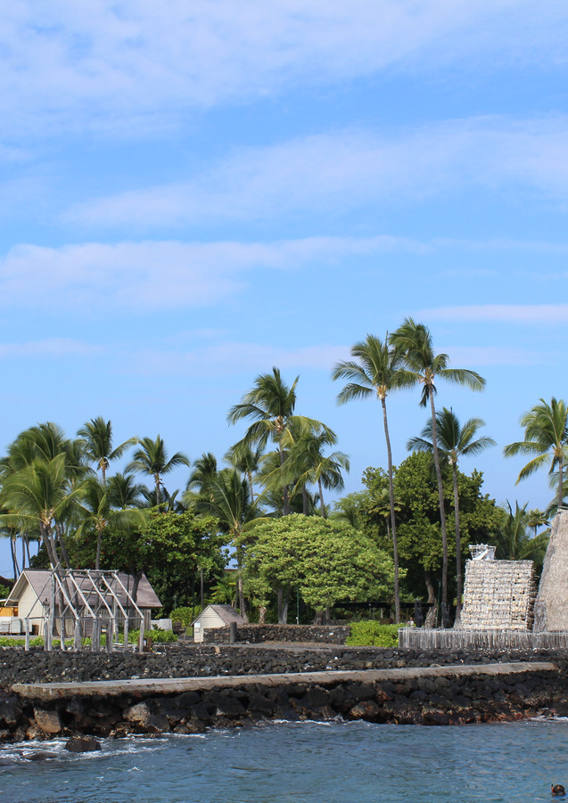 Hawaii Hut