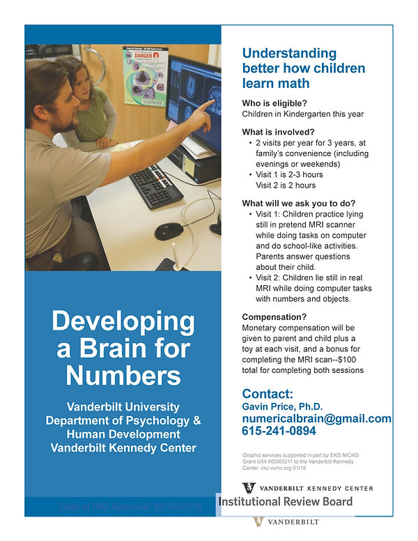 Numerical Brain Lab Flyer.jpg