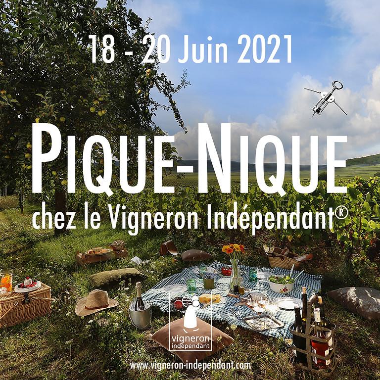 Pique-nique vigneron domaine Montaude 2021
