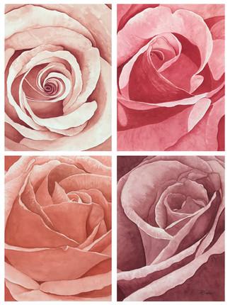 Maelin's Rose Garden