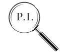 PI Logo Magnifying Glass.png