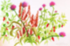 Flowers_Nienaber.jpg